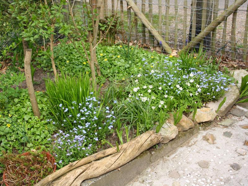 naturgarten gestalten naturgarten gestalten openpr naturgarten anlegen bepflanzen gestalten. Black Bedroom Furniture Sets. Home Design Ideas